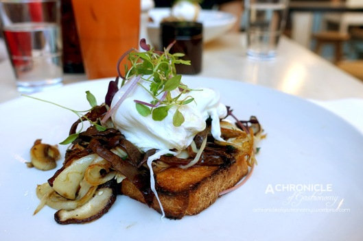 Patch - Wild Mushrooms - Shiitake, Woodear, Oyster Mushrooms, Thyme, Truffle Oil, Poached Eggs, Paleo Toast ($19)